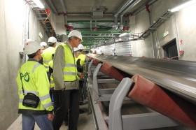 +Видео. Новая электростанция будет жечь сланец и древесину