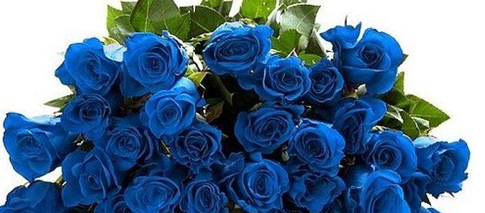 Картинки синие как море глаза - 4b9