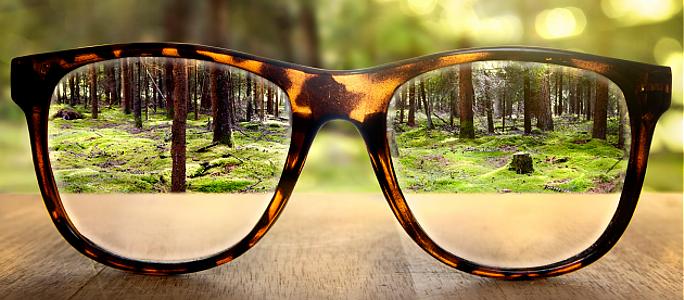 6 продуктов, которые помогут сохранить зрение