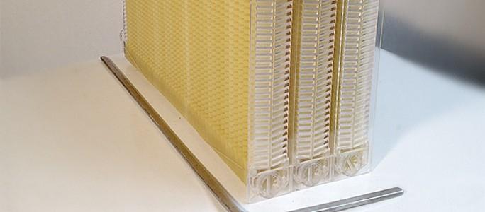 Улей с вытекающим мёдом собрал 2 млн долларов