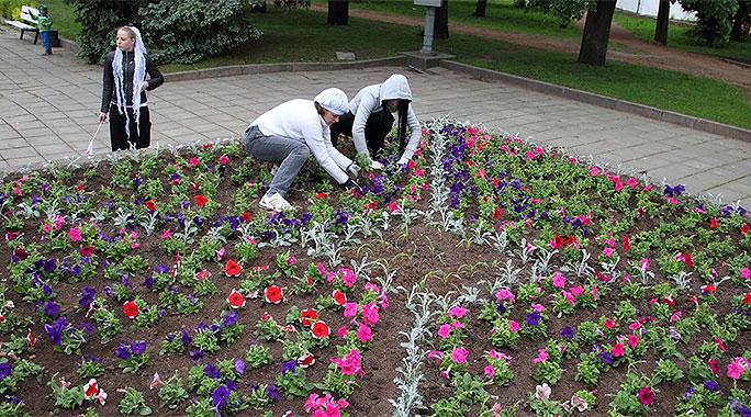 """Клумба невест"" снова появится на Петровской площади!"