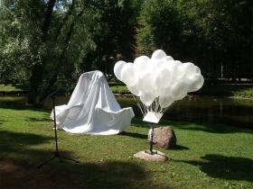 В Светлом парке Нарва-Йыэсуу  вновь появились лебеди