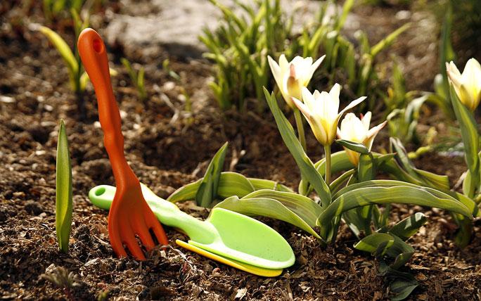 Перечень работ в саду на апрель