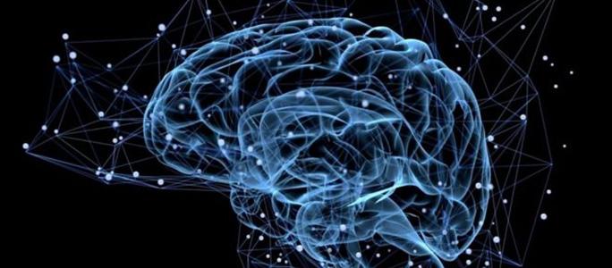 Раскрыт способ остановить старение мозга