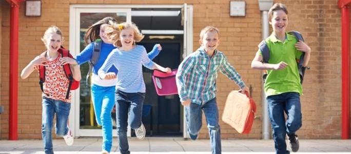Школьные каникулы утвердили на три года