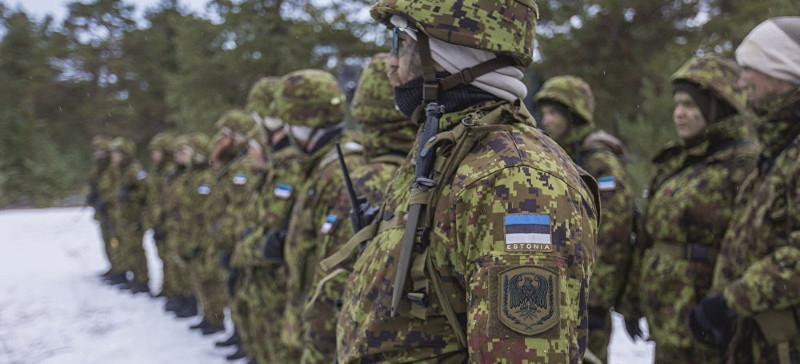 В учениях Raba участвует около 700 военнослужащих