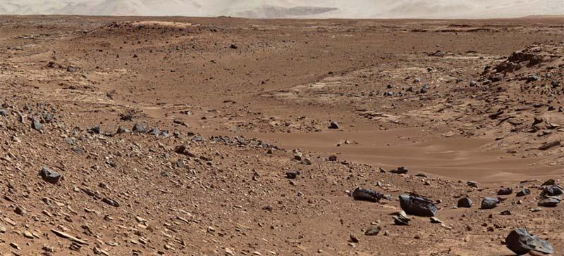 НАСА отправит на Марс пчел