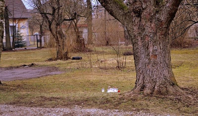Убитой в Кохтла-Ярве Насте было нанесено как минимум десять ударов ножом