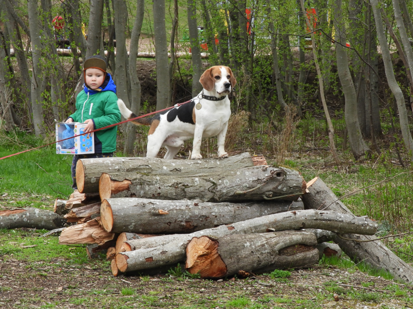 +Галерея. На «Ореховке» навели чистоту и посадили деревья