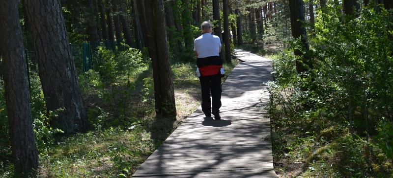 Будет составлен план по вырубке леса  Нарва-Йыэсуу на ближайшие 40 лет
