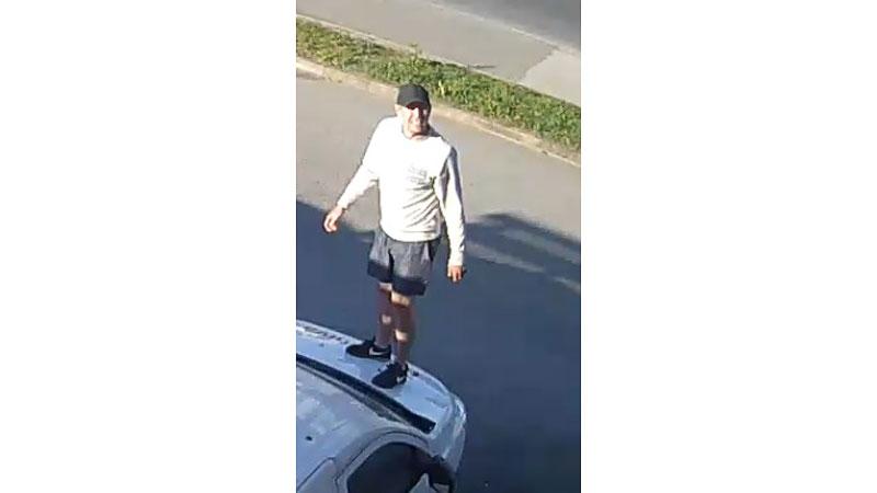Полиция просит помощи