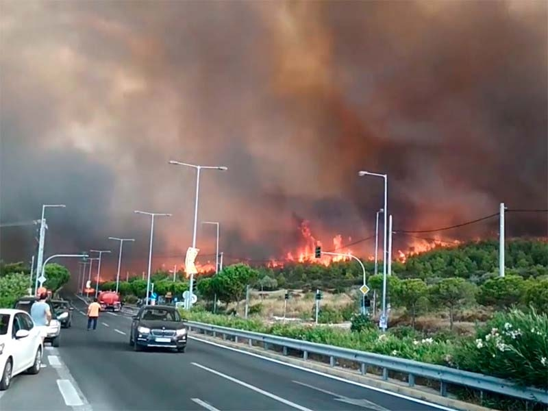В греческой Аттике объявлено чрезвычайное положение из-за лесных пожаров