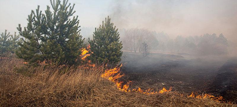 Спасательный департамент вводит режим повышенной пожароопасности