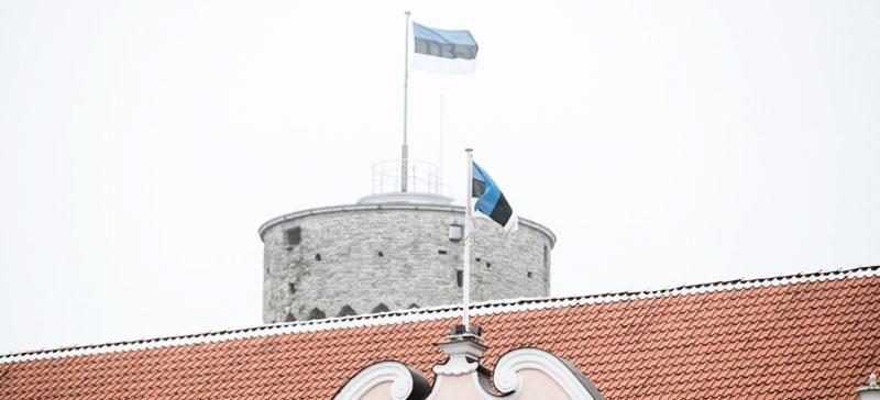 На Петровской площади в Нарве мужчина бросил в лужу флаг Эстонии и стал по нему топтаться