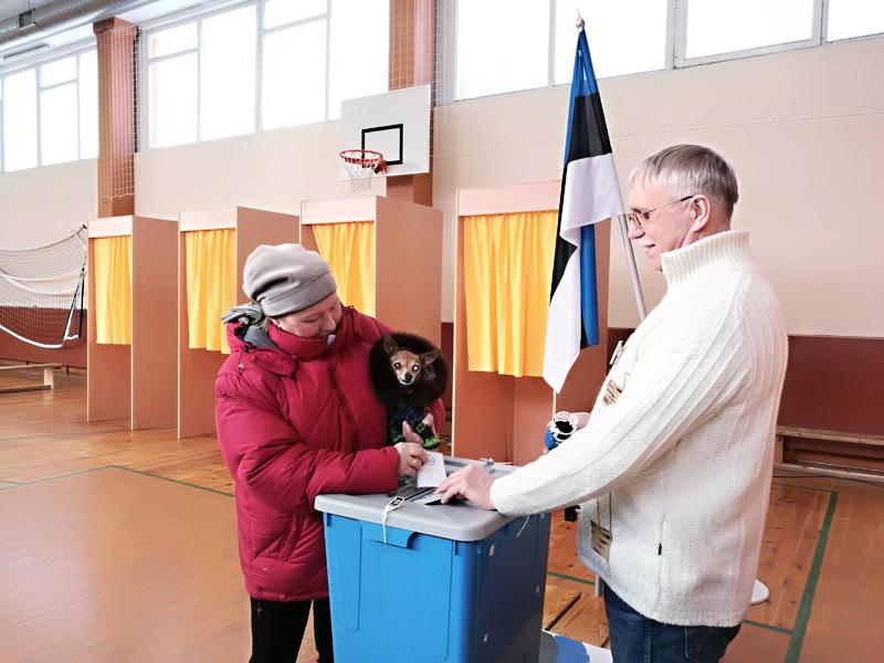 +Галерея. Нарвитяне крайне разочарованы  в политиках: всего 41% проголосовавших