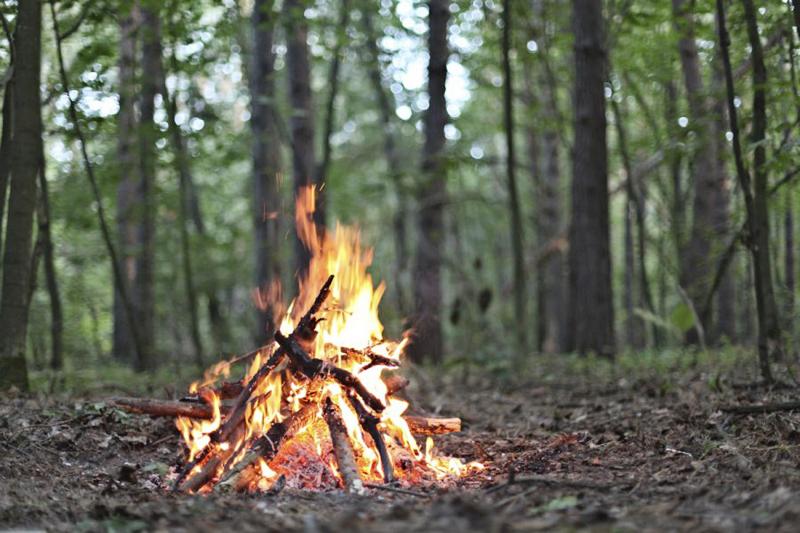 Пожароопасное время: на выходных спасатели проведут контрольные рейды в места гриля и костров
