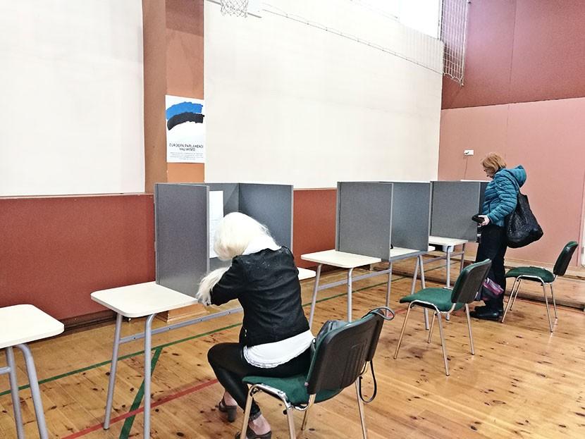 Выборы в Нарве практически провалились:  явка составила всего 18,9 процента