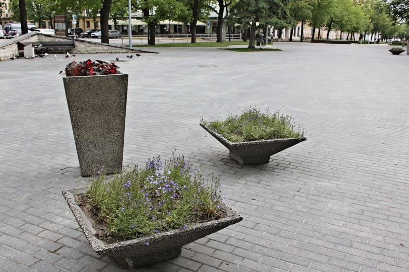 Ставка городского садовника сокращена