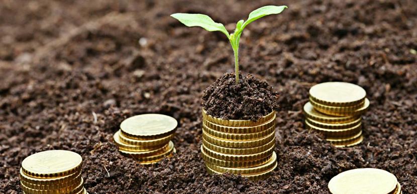 Земельный налог можно уплатить по электронному счёту