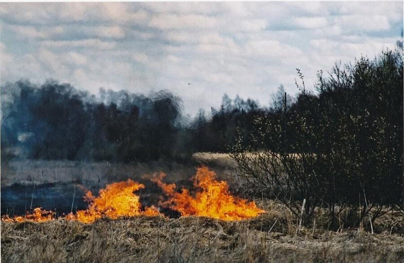 В 300 километрах от границы Эстонии пожар на нефтеперерабатывающем заводе