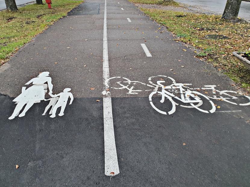 Доволен ли мэр велодорожками и «кто сшил костюм» велодорожке на Пушкина?