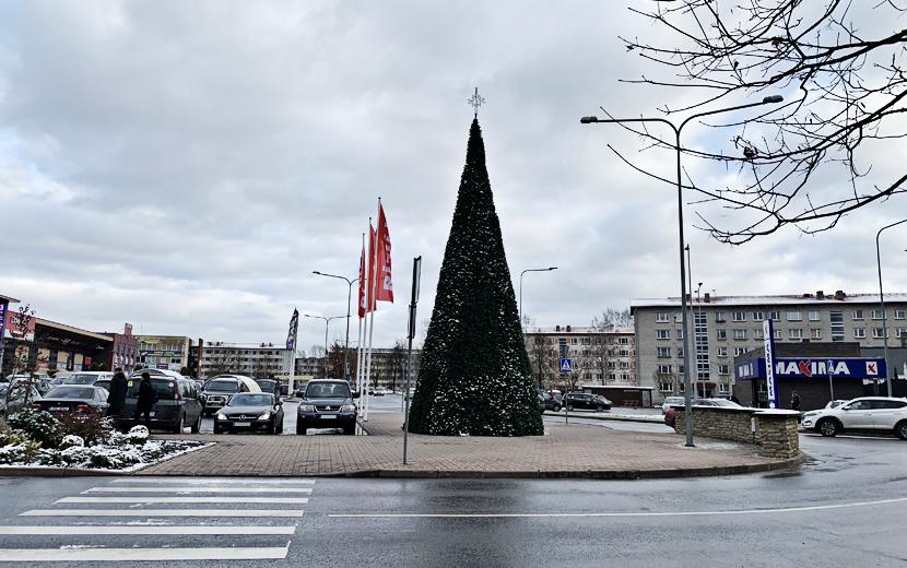 ФОТОФАКТ. В Нарве начали ставить новогодние елки