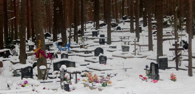 В 2019 году в Эстонии смертей было на 1500 больше, чем рождений