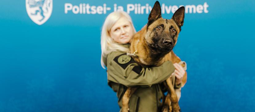 Вот молодец! Служебный пес Шарки задержал 17-летнего парня, нанесшего мужчине тяжелые ранения ножом