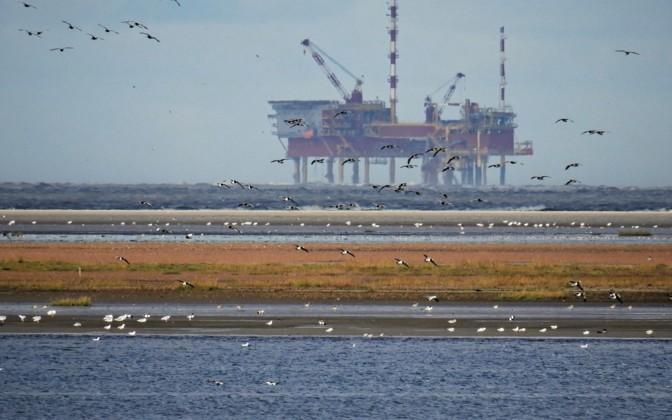 Нефть подорожала до 43 долларов за баррель после решения ОПЕК+ продолжить сокращение добычи