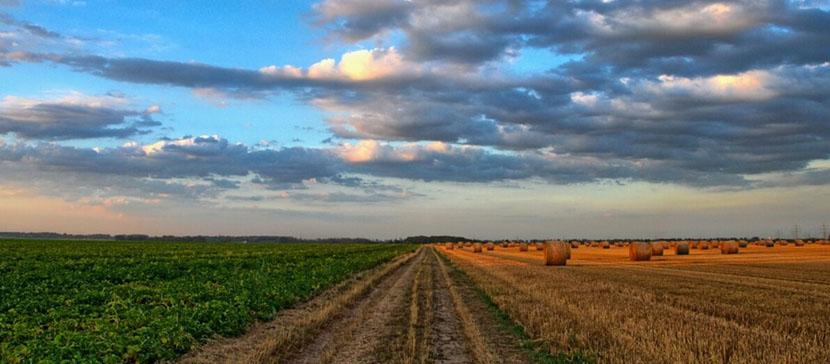 На инфочасе в Рийгикогу обсудили жизнь в сельских регионах Эстонии