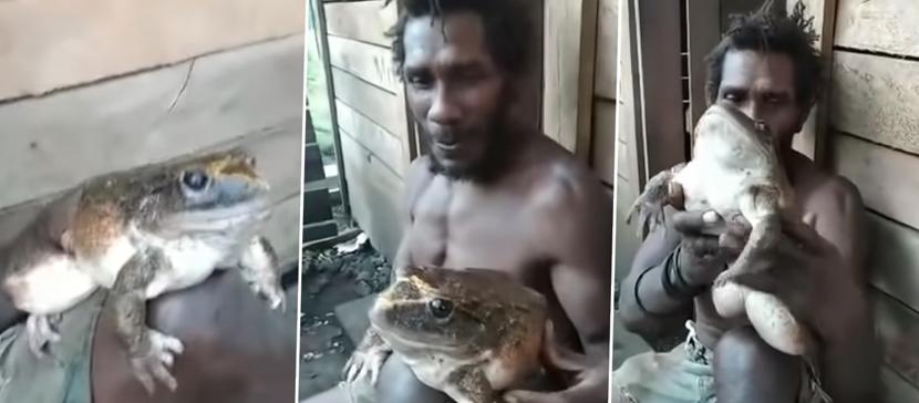 Житель деревни нашел лягушку размером с младенца