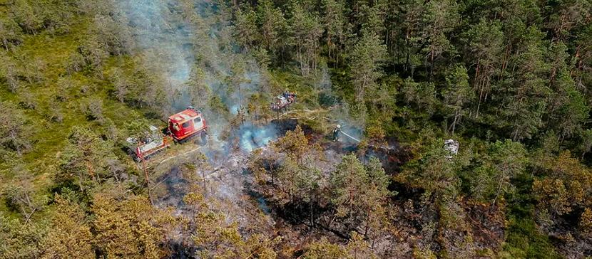 Пожароопасный период: в Эстонии смягчаются ограничения